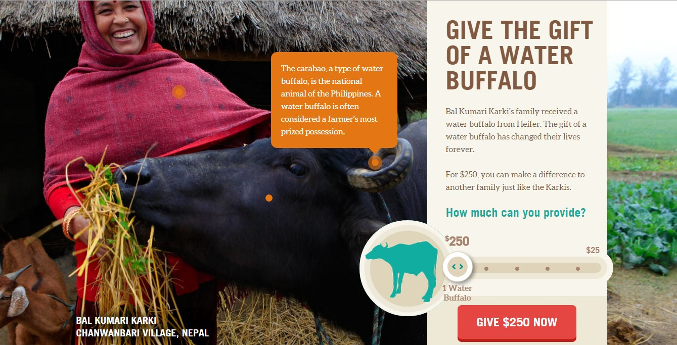 "Heifer International ""Product"" Catalog Sample screenshot"